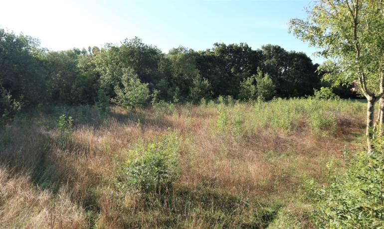 Terrain 1472m² constructible emplacement rare, au calme
